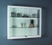 Trophy Cabinet With Downlight Set