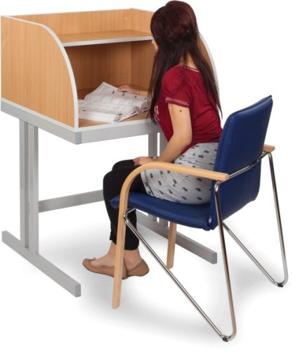 Monarch Study Booth With Cantilever Legs