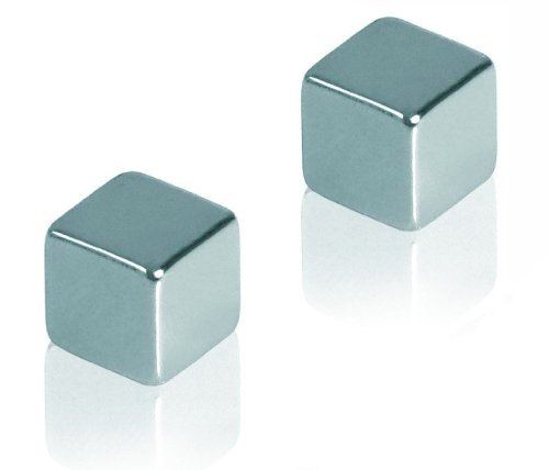 Gentoo Neodymium Magnets - Pack of 2